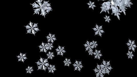 Snowflake Seamless Footage