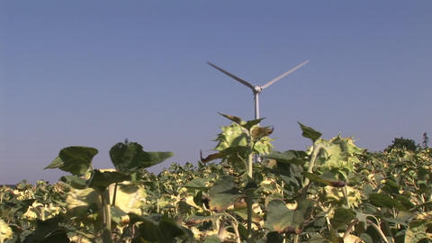 WindTurbine Stock Video Footage