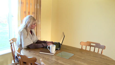 Quiet woman working at a laptop drinking coffee Stock Video Footage