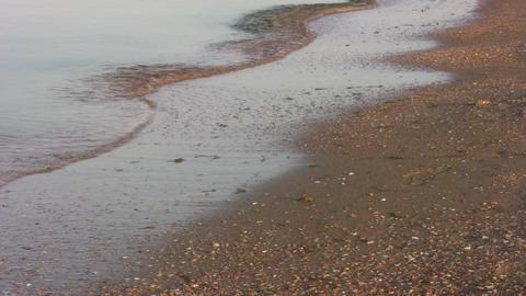 running legs on beach Stock Video Footage