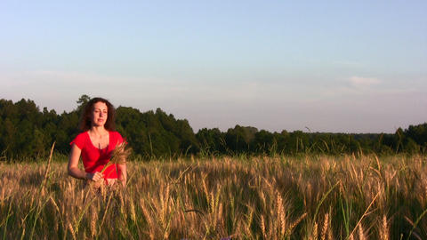 woman in wheat field Stock Video Footage