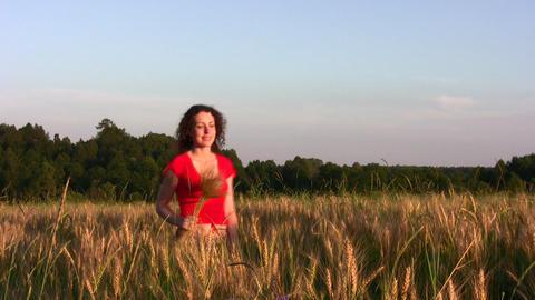 woman in wheat field Footage