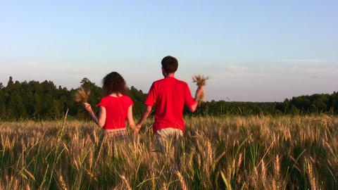 behind couple in wheat field Footage