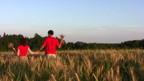 behind couple in wheat field Stock Video Footage