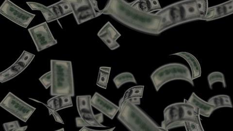 Dollar bills falling like rain - Wealth - Finance - Black Background - Loopable Animation