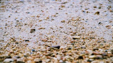 Beach rocks Stock Video Footage