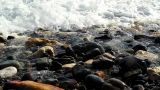 Waves On Beach Rocks 12 SM HD stock footage