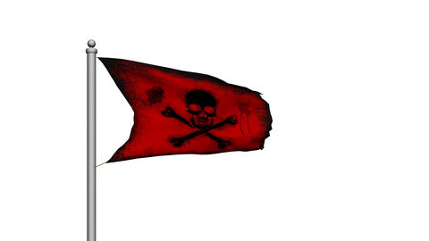 Skull and crossbones pirate flag on white background - Death - Danger Animation