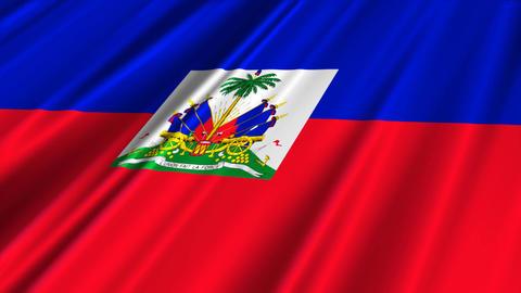 HaitiFlagLoop02 Stock Video Footage