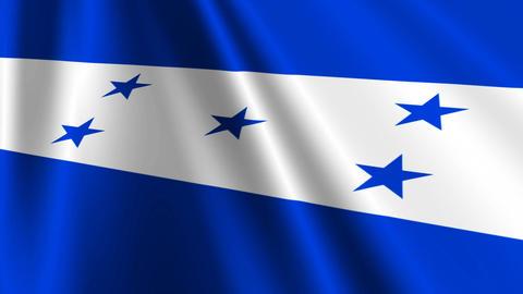 HondurasFlagLoop03 Stock Video Footage