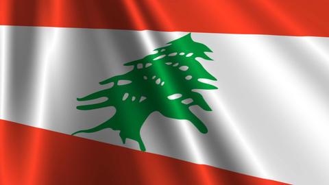 LebanonFlagLoop03 Stock Video Footage