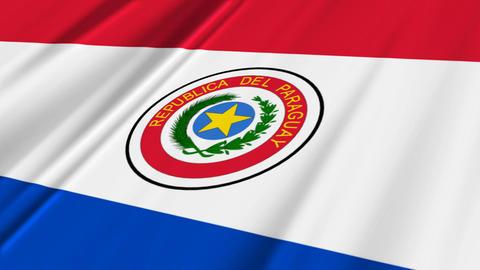 ParaguayFlagLoop02 Stock Video Footage