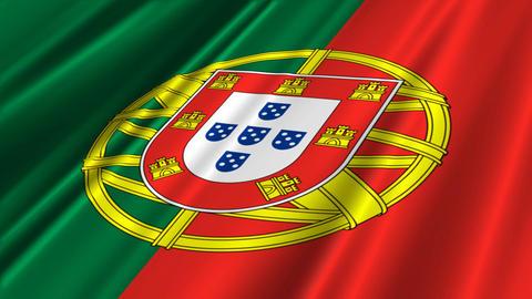 PortugalFlagLoop02 Stock Video Footage