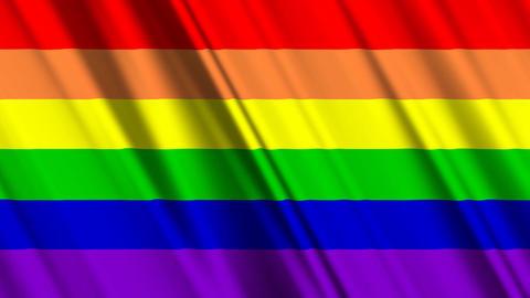 RainbowGayFlagLoop01 Stock Video Footage