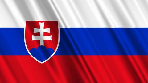 SlovakiaFlagLoop01 Stock Video Footage