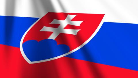 SlovakiaFlagLoop03 Stock Video Footage