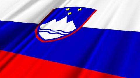 SloveniaFlagLoop02 Stock Video Footage