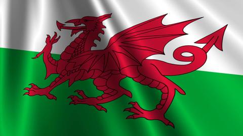 WalesFlagLoop03 Stock Video Footage