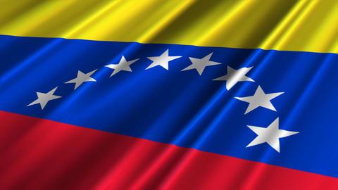 VenezuelaFlagLoop02 Stock Video Footage