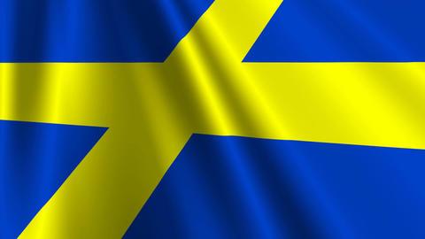 SwedenFlagLoop03 Stock Video Footage