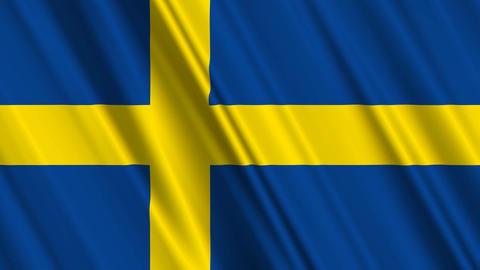 SwedenFlagLoop01 Stock Video Footage