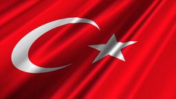 TurkeyFlagLoop02 Stock Video Footage