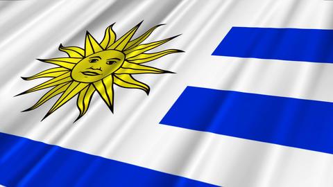 UruguayFlagLoop02 Stock Video Footage