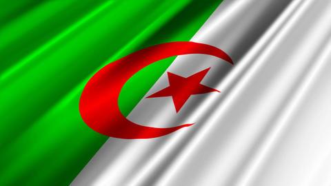 AlgeriaFlagLoop02 Stock Video Footage