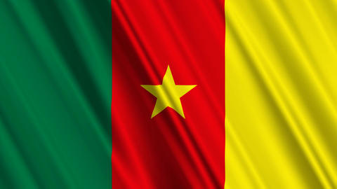 CameroonFlagLoop01 Stock Video Footage