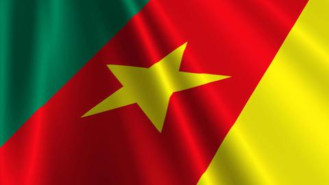 CameroonFlagLoop03 Stock Video Footage