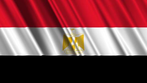 EgyptFlagLoop01 Stock Video Footage
