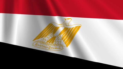 EgyptFlagLoop03 Stock Video Footage