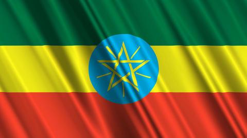 EthiopiaFlagLoop01 Stock Video Footage