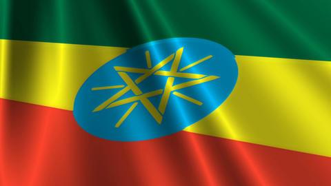 EthiopiaFlagLoop03 Stock Video Footage