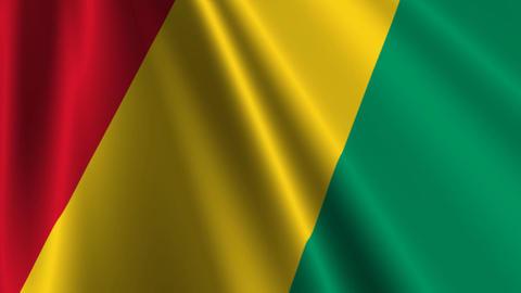 GuineaFlagLoop03 Stock Video Footage