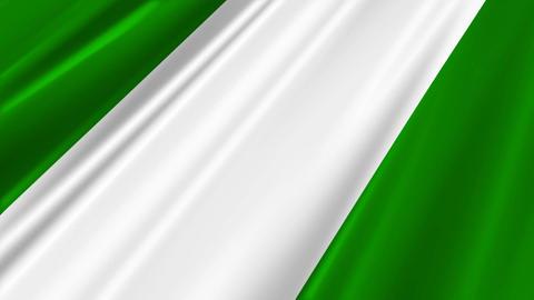 NigeriaFlagLoop02 Stock Video Footage