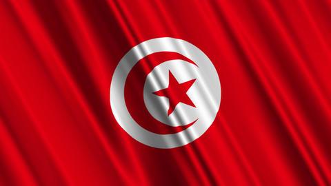 TunisiaFlagLoop01 Stock Video Footage