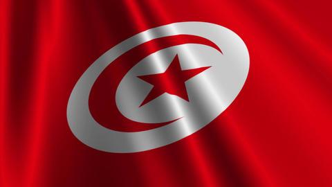 TunisiaFlagLoop03 Stock Video Footage