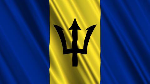BarbadosFlagLoop01 Stock Video Footage