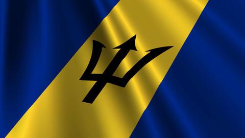 BarbadosFlagLoop03 Stock Video Footage