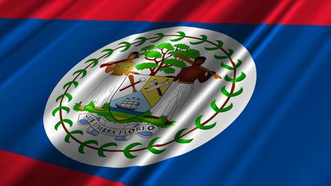 BelizeFlagLoop02 Stock Video Footage