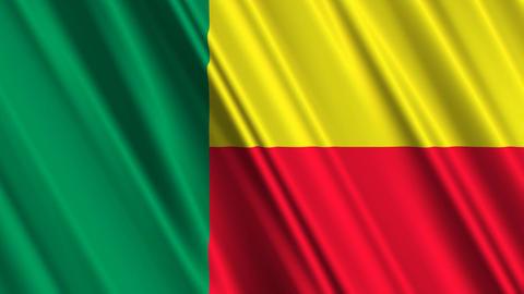 BeninFlagLoop01 Stock Video Footage