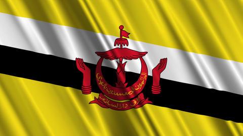 BruneiFlagLoop01 Stock Video Footage