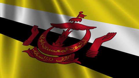 BruneiFlagLoop03 Stock Video Footage
