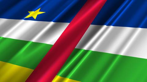 CentralAfricaFlagLoop02 Stock Video Footage