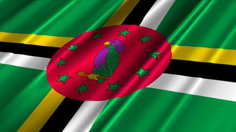 DominicaFlagLoop02 Stock Video Footage