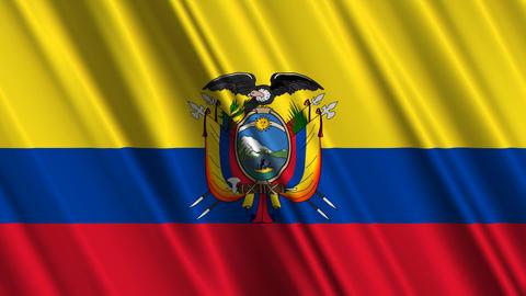 EcuadorFlagLoop01 Stock Video Footage