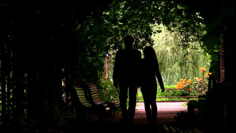 couple silhouette in plant tunnel Stock Video Footage