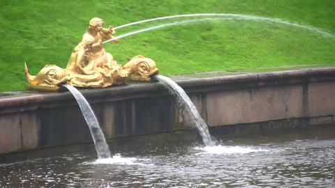 fountain. Peterhof. Petersburg Stock Video Footage