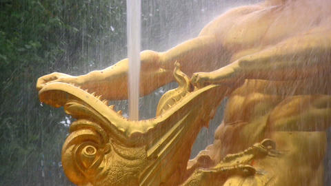fountain. Peterhof. Petersburg. Zoom Footage